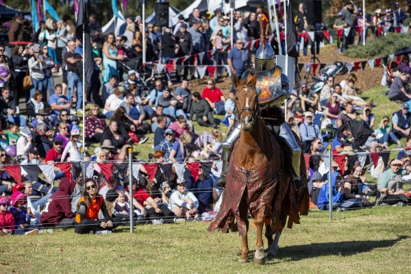 Rider prepares for jousting while crowd watches at Blacktown Medieval Fayre 2018